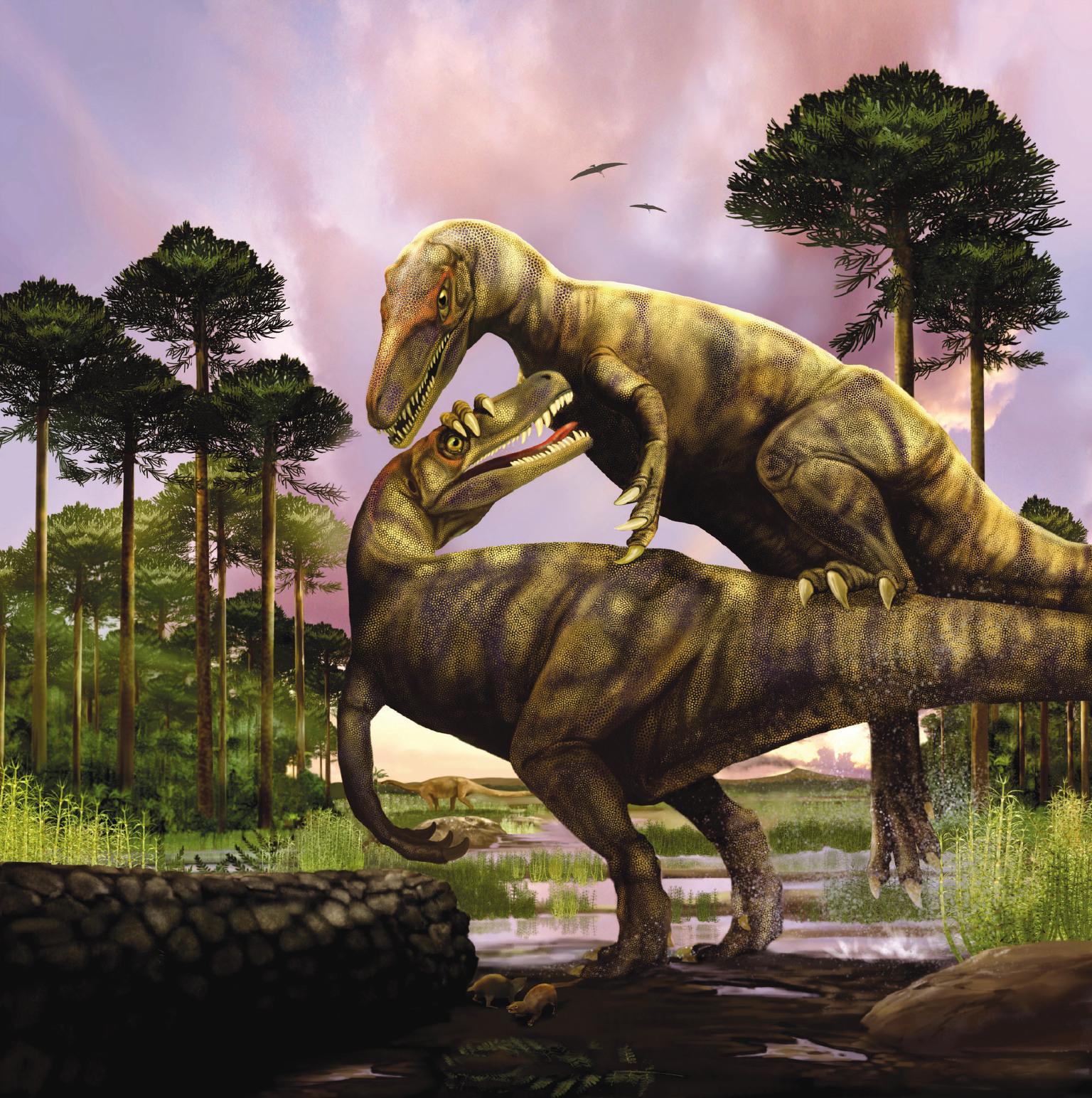 Herrarasaurus Illustration
