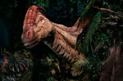 JTP-Parasaurolophus