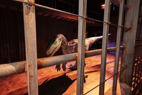 JW_FI_Raptor_Cage_01