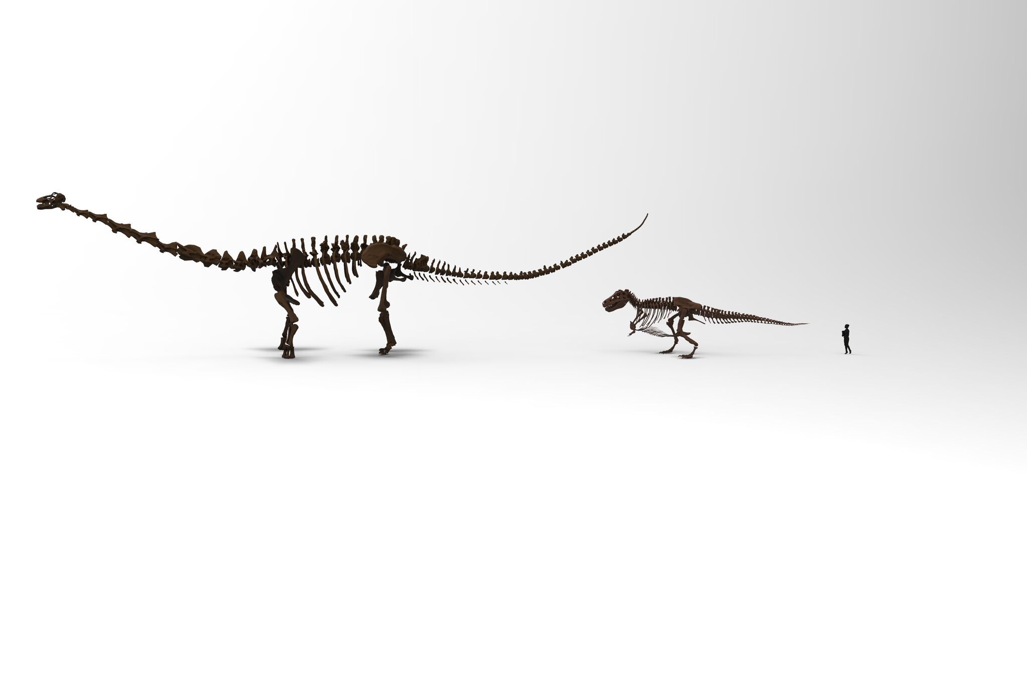 Patagotitan SUE and visitor