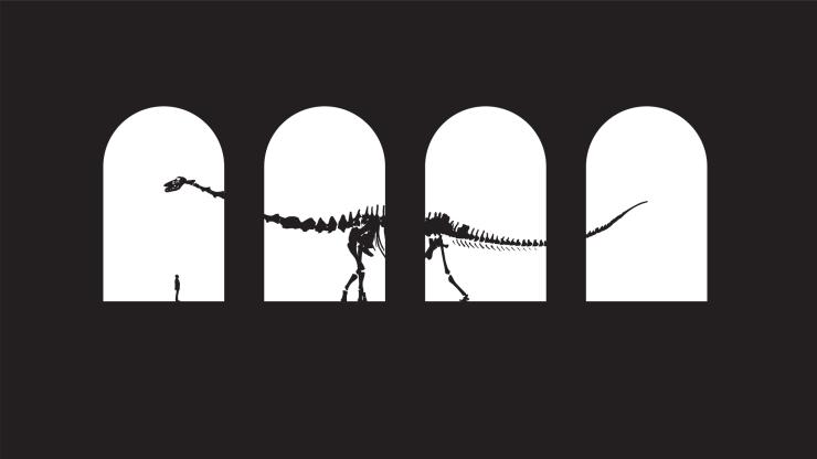 Titanosaur 1