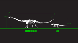 Titanosaur and SUE