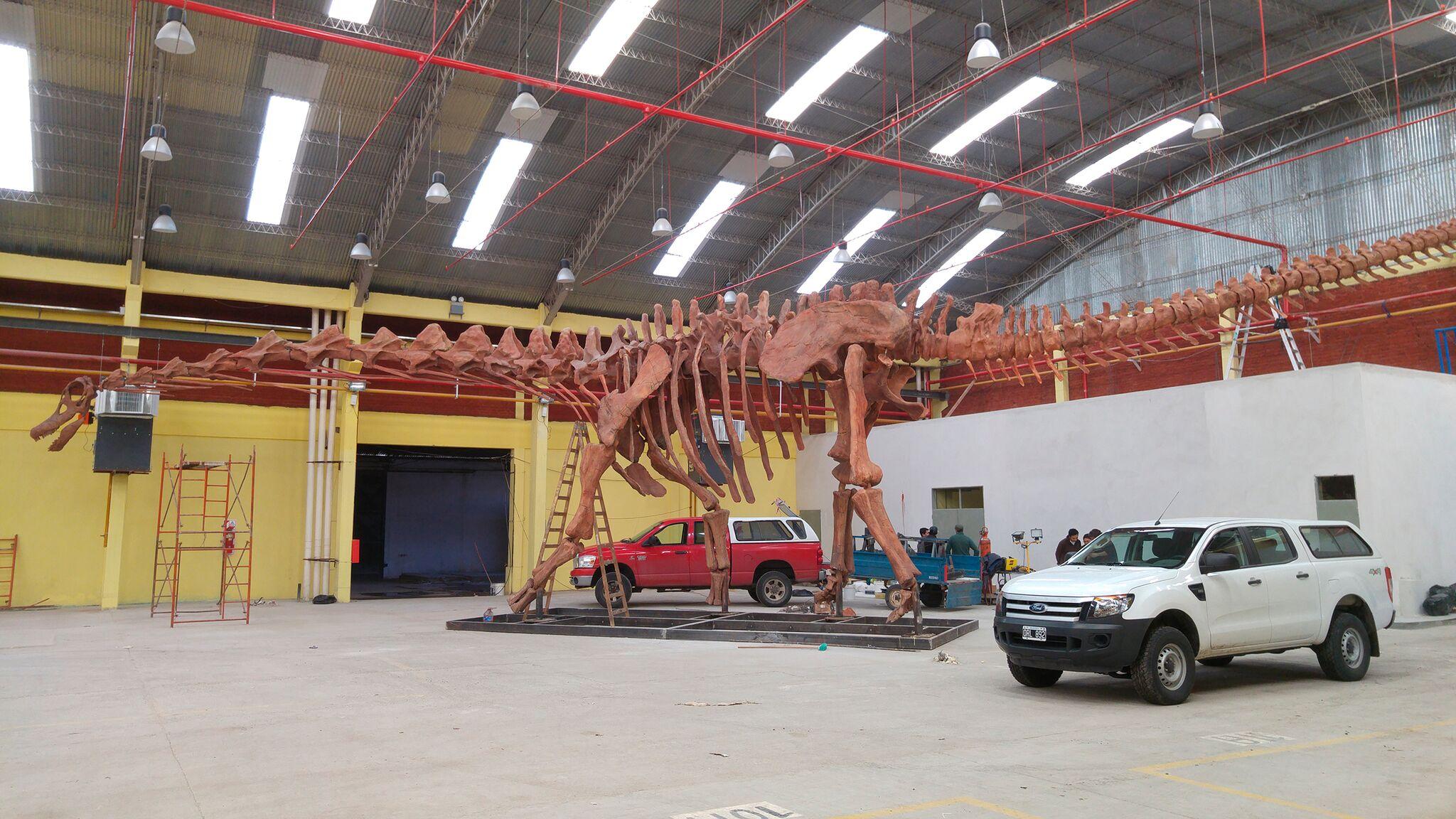 Titanosaur cast