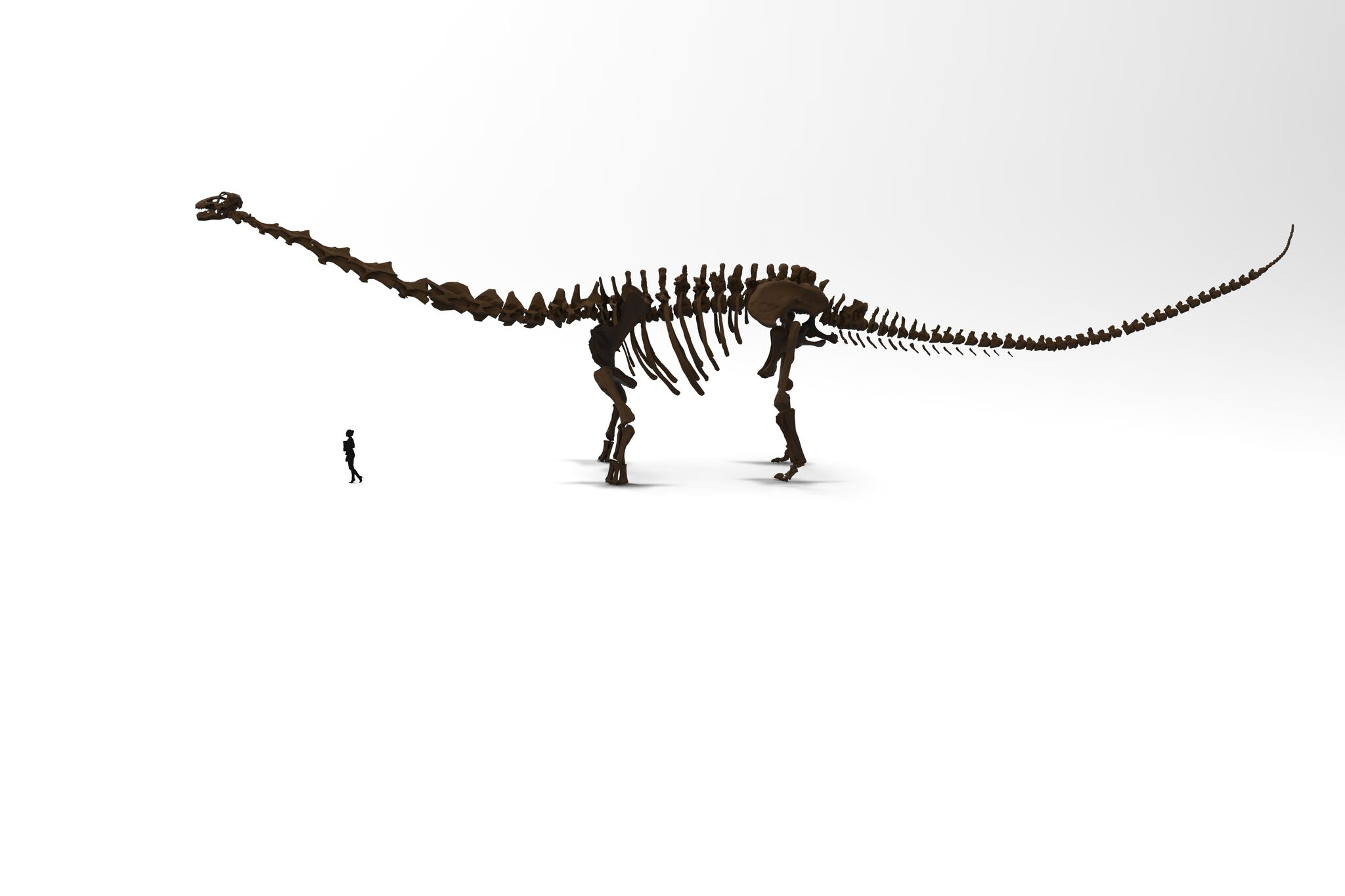 Visitor and Patagotitan
