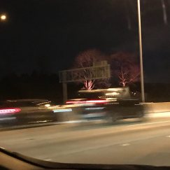 Credit: S.M. O'Connor Caption: The lights on the trees flanking the Morton Arboretum sign changed to pink.