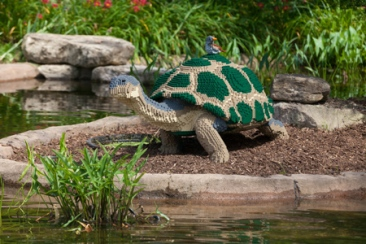 Nature_Connects_turtle_med