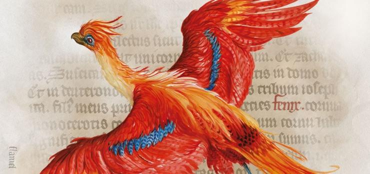 Phoenix illustration by Jim Kay Bloomsbury Publishing Plc 2016 Original design by the British Library 2017