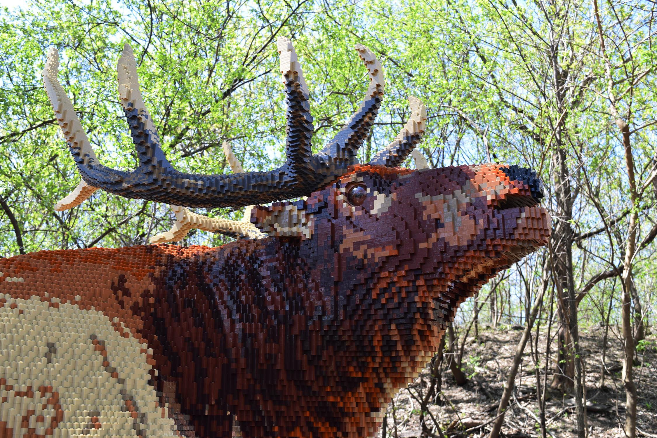 Brick-Safari-Elk